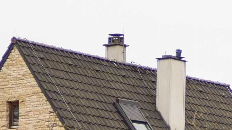 purple fringing voigtländer nokton 50mm 1.5 contrast axial ca