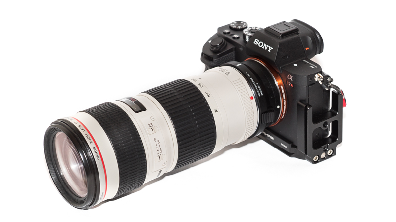 Sony A7rII with Sigma MC-11 and Canon EF 70-200mm 4.0 L USM