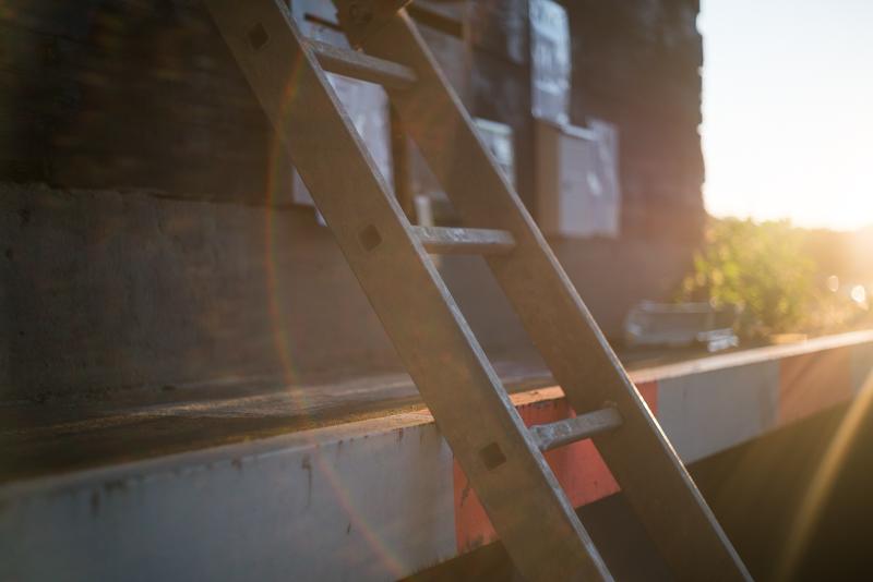 nikon h nikkor rangefinder nikkor-h 50mm 2.0 rf sony a7 a7rii bokeh oof out of focus