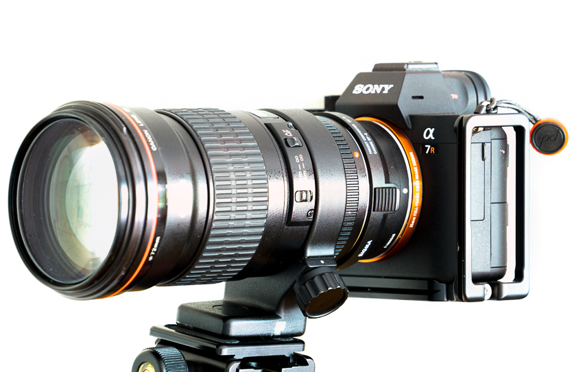 Review: Canon EF 2 8/200 L II on Sony a7rIII - phillipreeve net