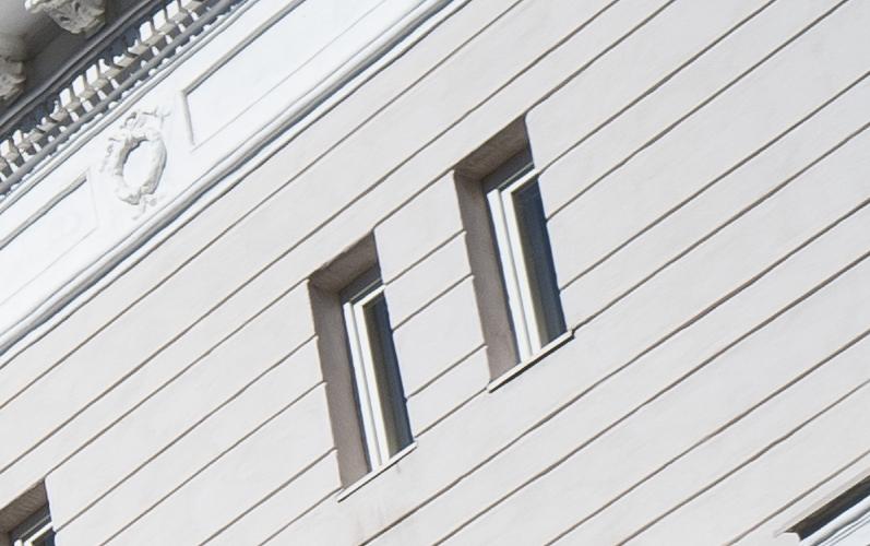 review sharpness 42mp high resolution sample test vergleich comparison bokeh handling build quality a7riii autofocus af close macro