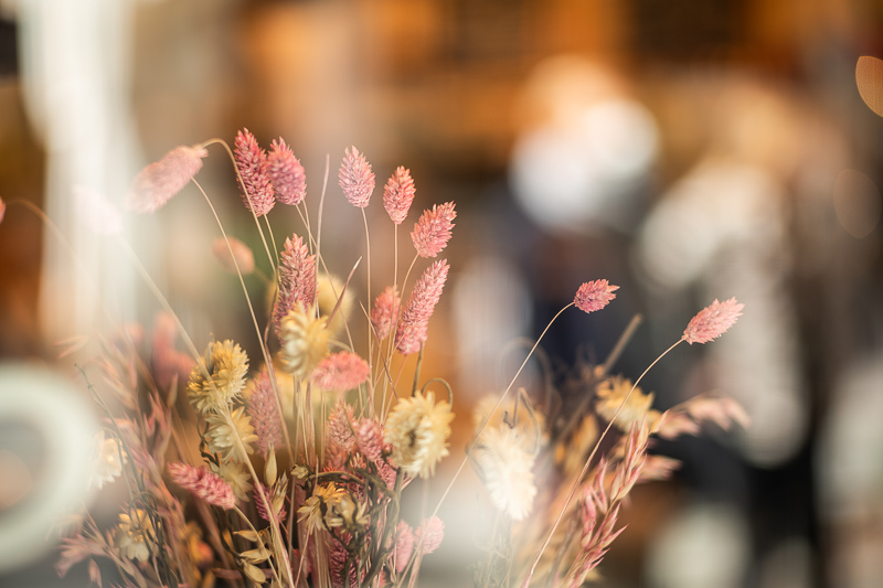 bokeh summicron 90mm 2.0 sony a7 review 42mp leica m10 24mp sharpness contrast