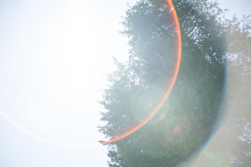 laowa 33mm 0.95 f/0.95 portrait lens review sharpness contrast resolution bokeh venus optics